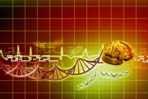 naukowy mózg