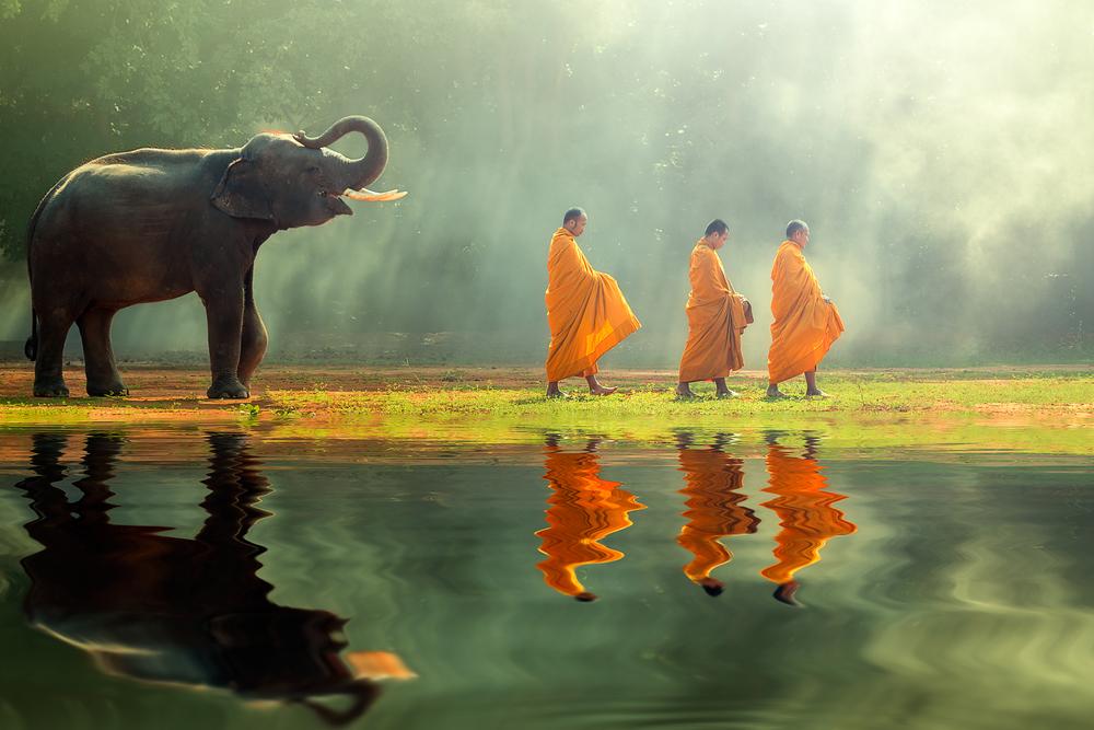 In nomine Buddhae, et Dharmae, et Sancti Sanghi. Amen.