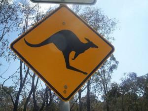 Pompones et terra Australis Incognita
